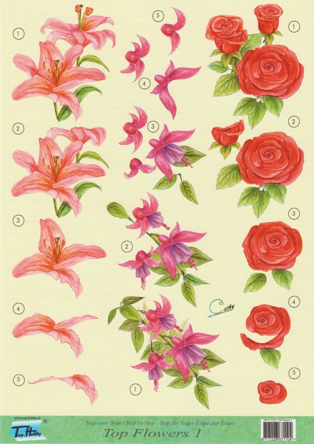 Top Flowers - 3DA4 Step by Step Decoupage Sheet